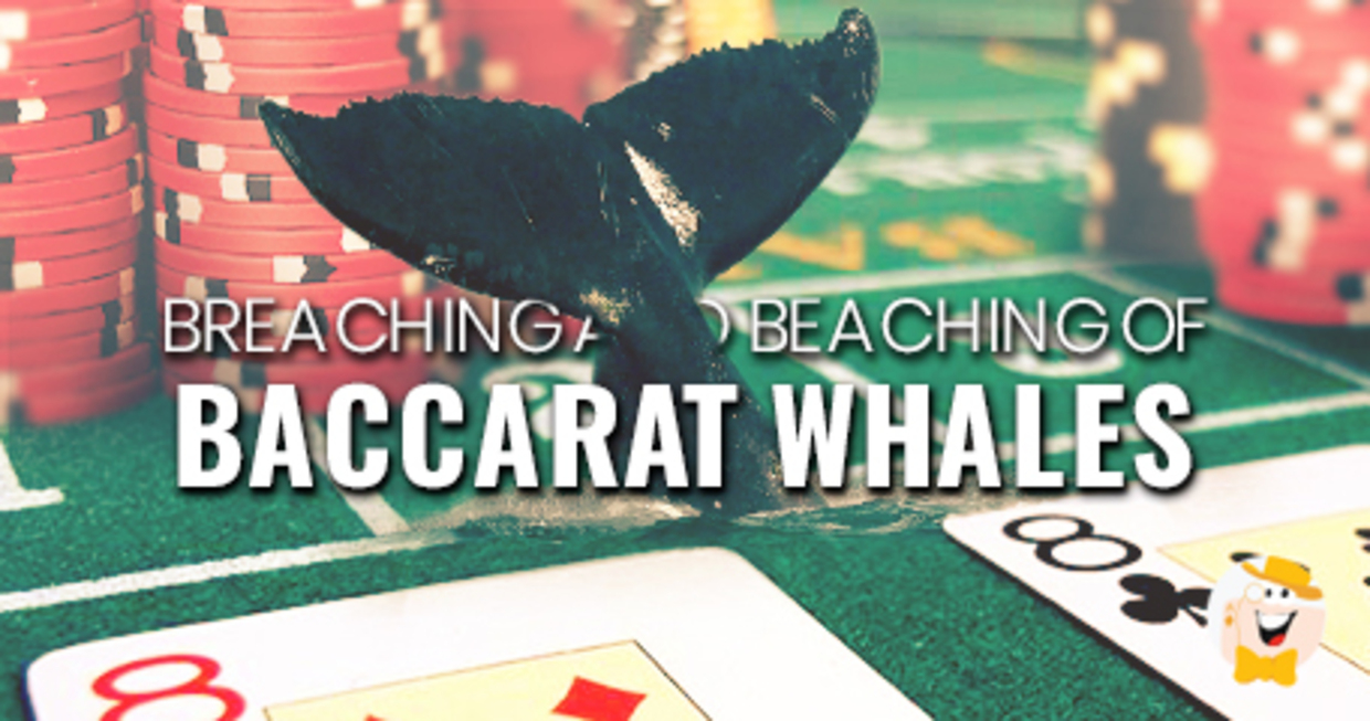 atlantic baccarat casino city play that whale